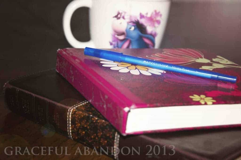 graceful abandon bible devotions journal quiet time