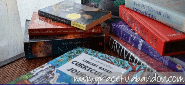 Getting Ready For A New Homeschool Year: Choosing the Right Curriculum
