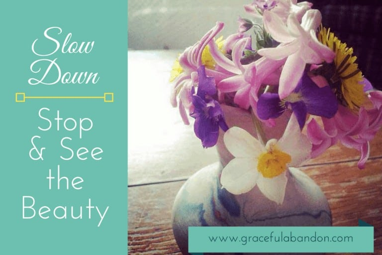 Stop and See the Beauty: Slow Down, Mama