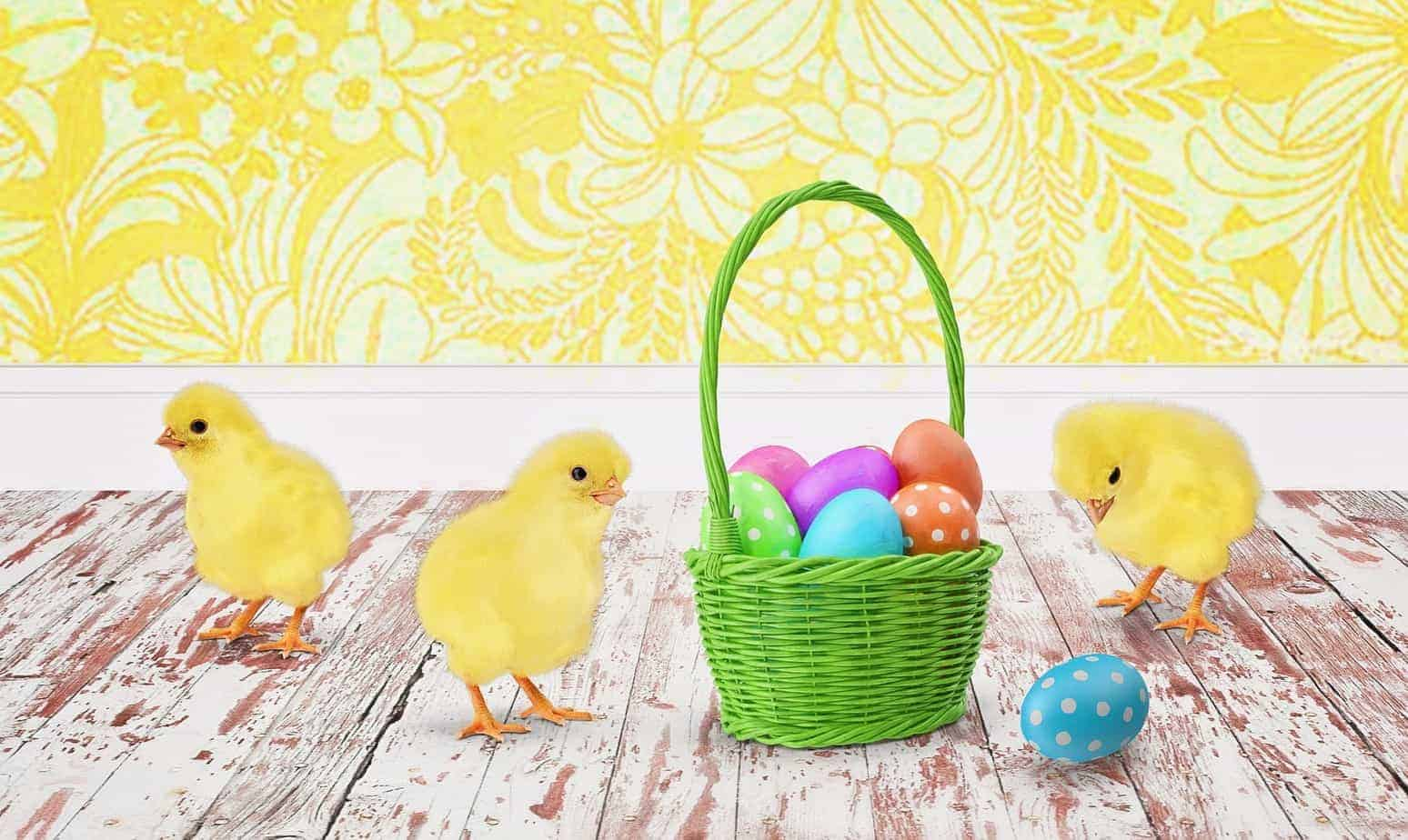24 candy free easter egg basket ideas for all ages candy free easter basket negle Images