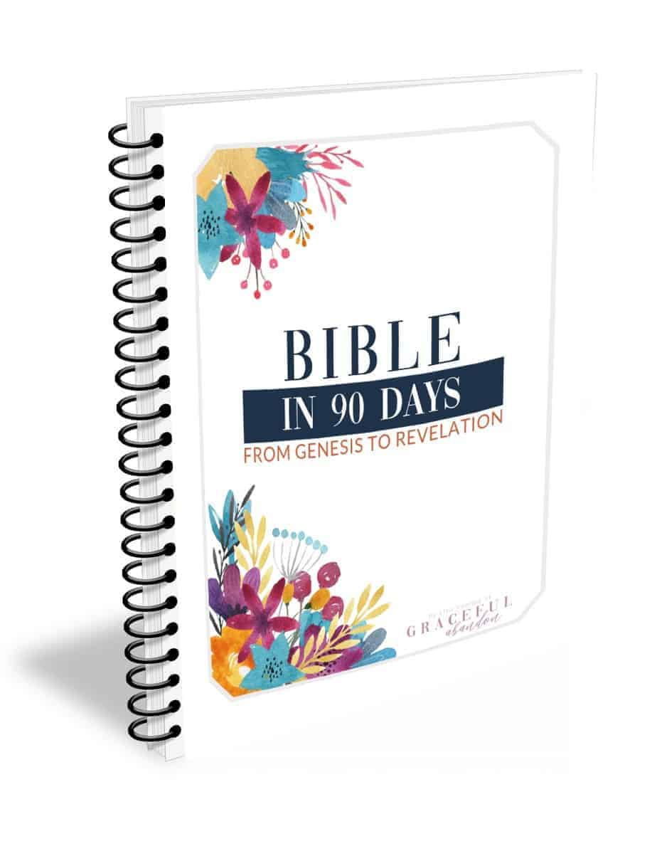how to read the Bible in 90 days notebook