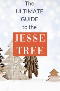 Read the Ultimate Guide To Your Family Advent Celebration with The Jesse Tree. Find the best books, ideas for what to do, and why it matters.