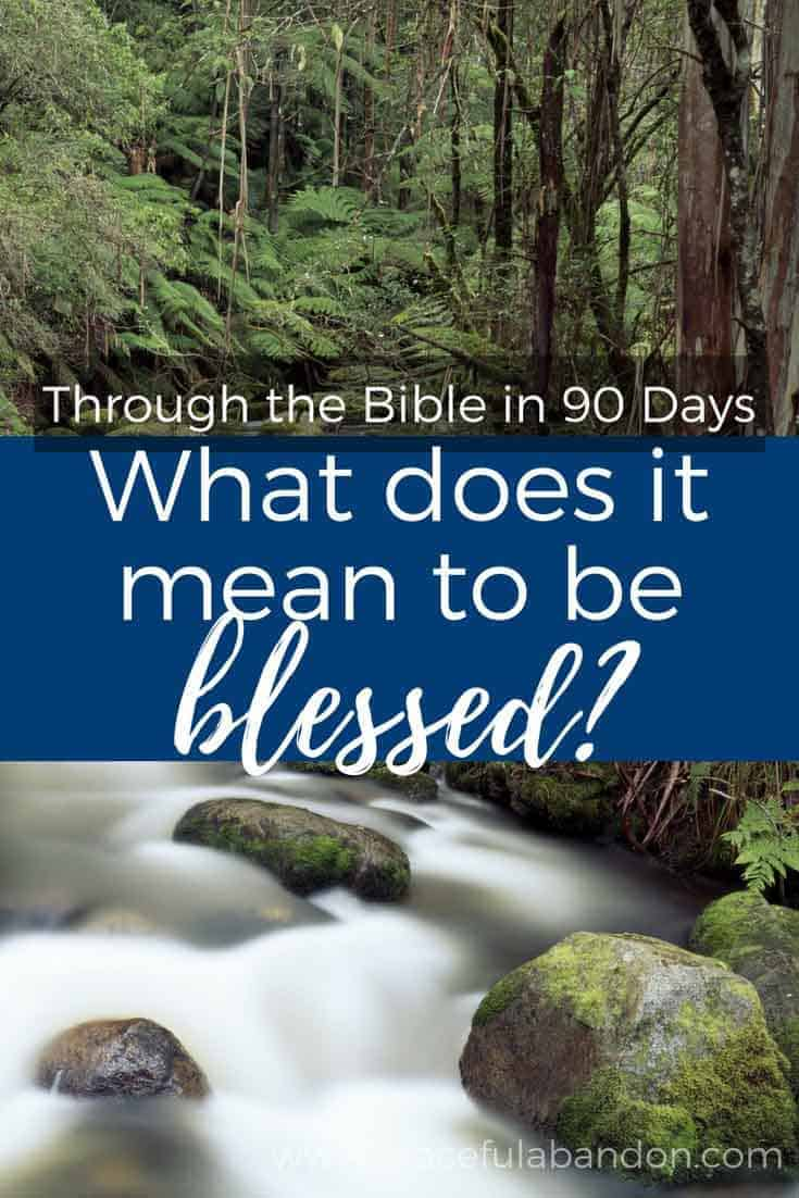 Through the bible in 90 days day 38 pin what does it mean to be save biocorpaavc Image collections