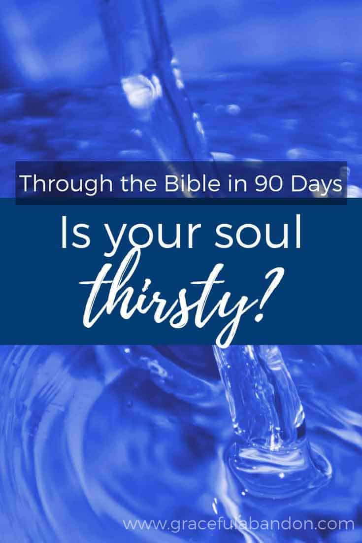 A look at the Psalms and what it means to have a thirsty soul.