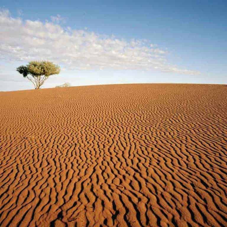 When You Are In A Desert Season: The Blessings of God Overwhelm