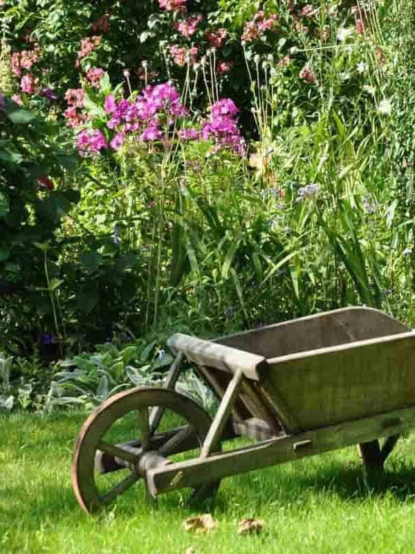 From Garden To Garden: The Sweetest Promise