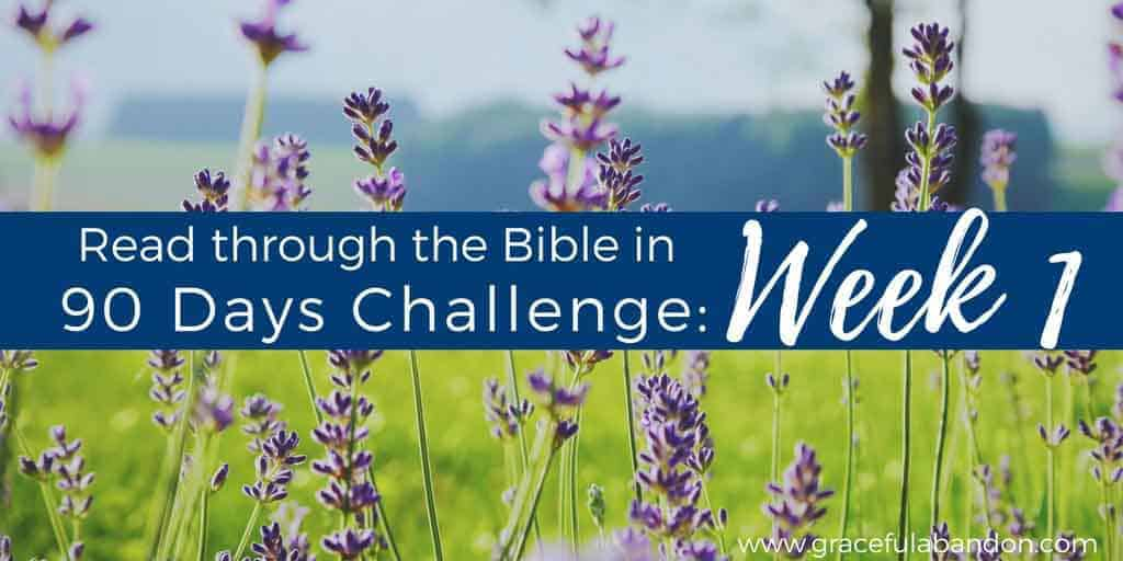 Read Through the Bible in 90 Days recap