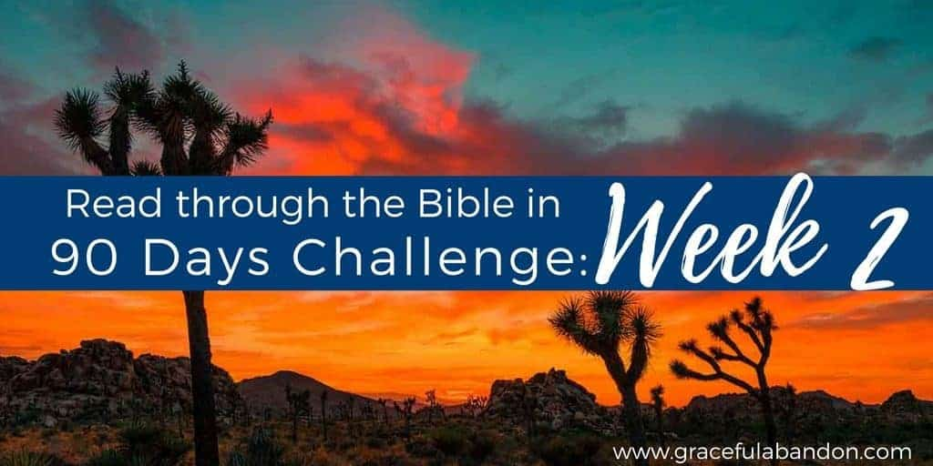 Bible in 90 days week 2. Summary of Leviticus, Numbers, and Deuteronomy.