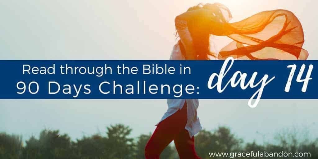 How to live a life of reckless abandon for God.