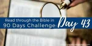 The promises in Psalm 119 for the believer are both bountiful and beautiful. Here are a dozen ways the Word of God will bless your life.