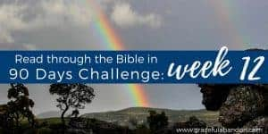 Bible in 90 Days Week 12